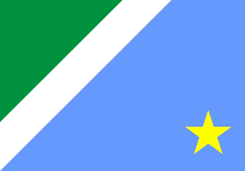 Bandeira: Mato Grosso do Sul